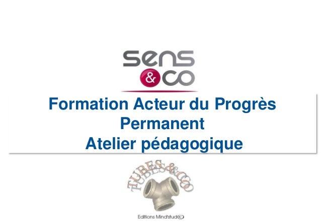 Formation Acteur du Progrès Permanent Atelier pédagogique