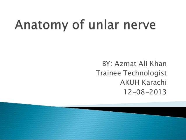 Presentation by azmat ali ulnar nerve anatomy 2