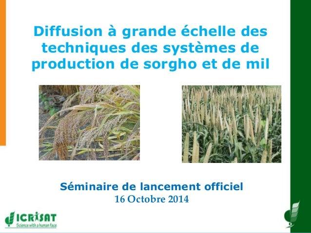 Diffusion à grande échelle des techniques des systèmes de production de sorgho et de mil Séminaire de lancement officiel 1...