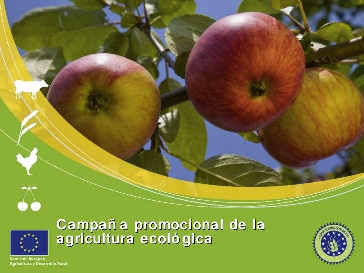 Presentation campaign es