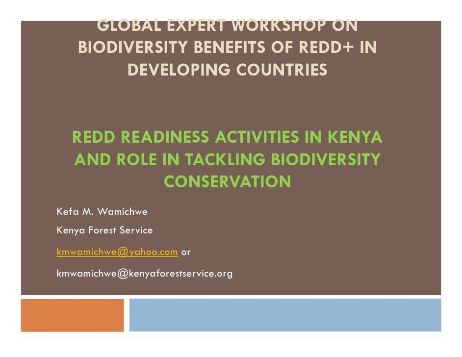 GLOBAL EXPERT WORKSHOP ON    BIODIVERSITY BENEFITS OF REDD+ IN         DEVELOPING COUNTRIES   REDD READINESS ACTIVITIES IN...