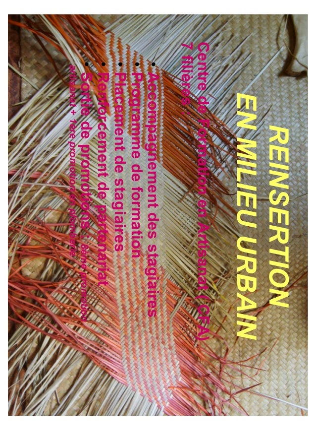 REINSERTION      EN MILIEU URBAINCentre de Formation en Artisanat ( CFA)7 filières :  • Accompagnement des stagiaires  • P...