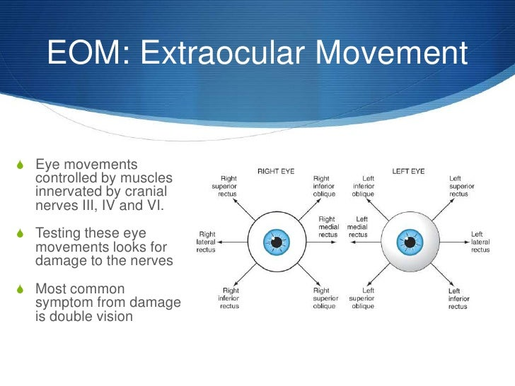 Upper Saddle River Nj >> Abbreviations of the Ear and Eye