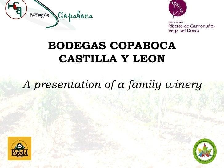 Introducing Bodega Copaboca from Castilla y Leon. spain 16.6.2010