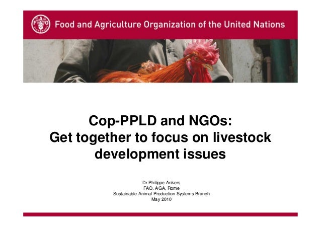 Cop-PPLD and NGOs:Get together to focus on livestock       development issues                      Dr Philippe Ankers     ...