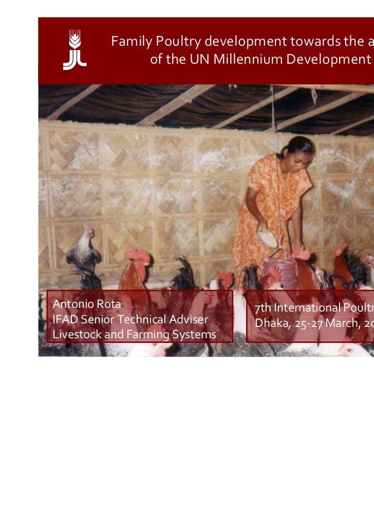 a        Family Poultry development towards the achievement                of the UN Millennium Development GoalsAntonio R...