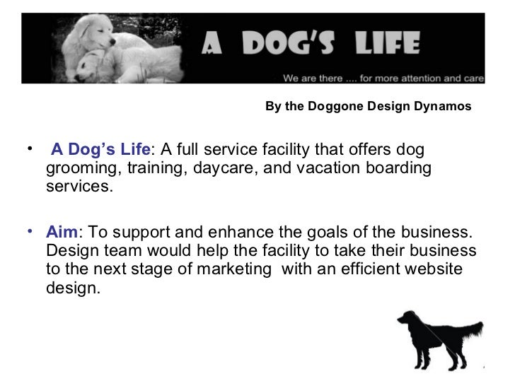 By the Doggone Design Dynamos   <ul><li>A Dog's Life : A full service facility that offers dog grooming, training, daycare...
