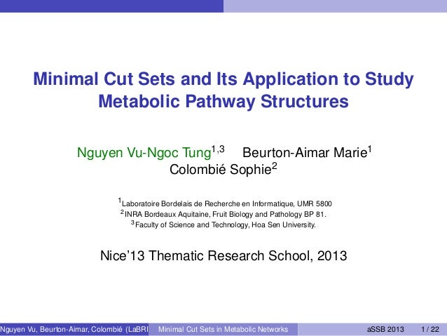 Minimal Cut Sets and Its Application to Study Metabolic Pathway Structures Nguyen Vu-Ngoc Tung1,3 Beurton-Aimar Marie1 Col...
