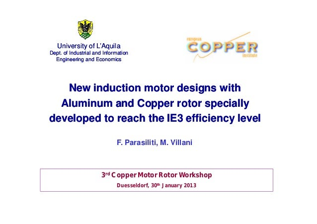 University of L''Aquila  Dept. of Industrial and Information  Engineering and Economics  New induction motor designs with ...