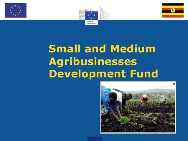 Small and Medium Agribusinesses Development Fund Tailoring 1