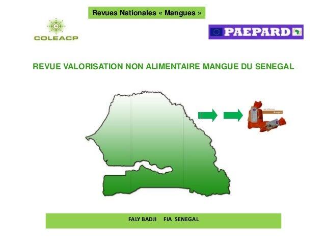 Revues Nationales « Mangues »REVUE VALORISATION NON ALIMENTAIRE MANGUE DU SENEGAL       –                    FALY BADJI   ...