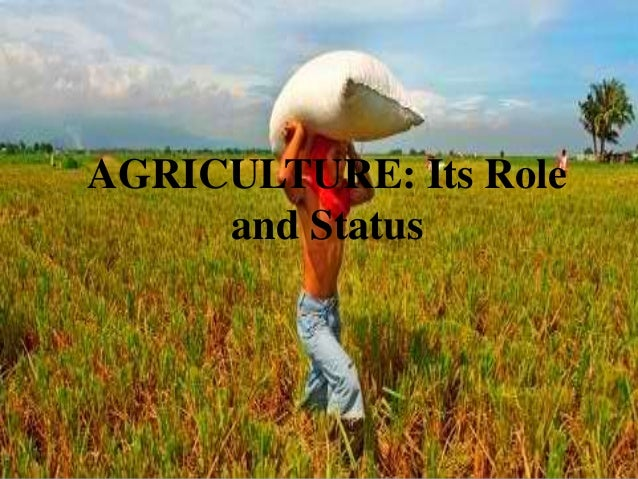 AGRICULTURE: Its Role     and Status