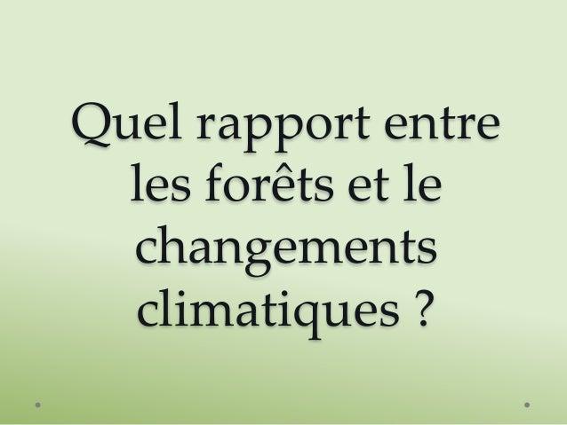 Quel rapport entre les forêts et le changements climatiques ?