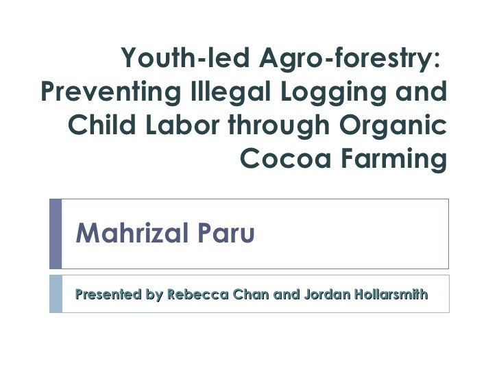 Youth-led Agro-forestry:  Preventing Illegal Logging and Child Labor through Organic  Cocoa  Farming Presented by Rebecca ...