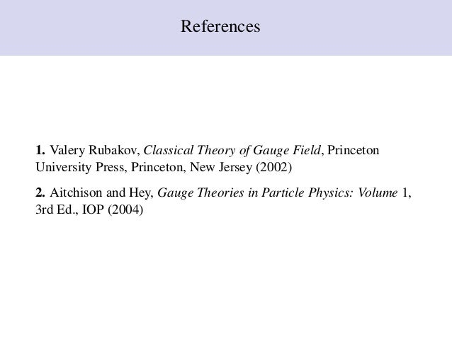 rubakov classical theory of gauge fields djvu