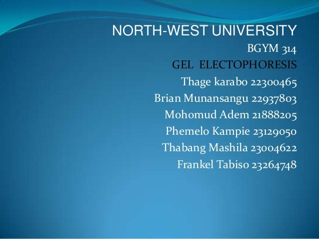 NORTH-WEST UNIVERSITY                       BGYM 314        GEL ELECTOPHORESIS          Thage karabo 22300465    Brian Mun...