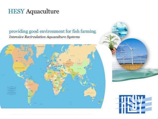 HESY Aquaculture providing good environment for fish farming Intensive Recirculation Aquaculture Systems