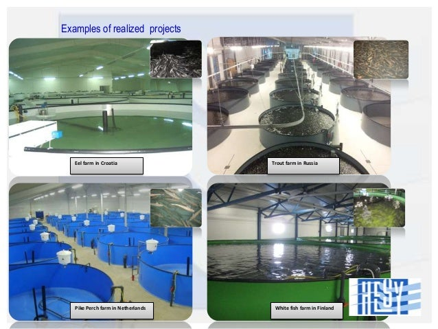 Aquaculture business plan