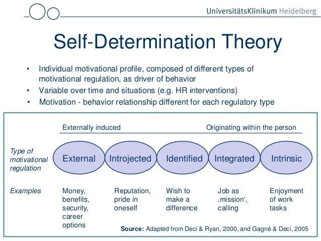 academic career goals sample essay