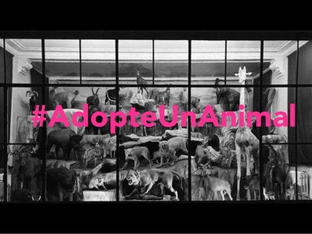 #AdopteUnAnimal