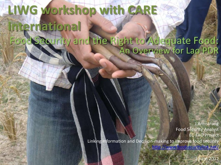 LIWG workshop with CAREInternationalFood Security and the Right to Adequate Food:                               An Overvie...