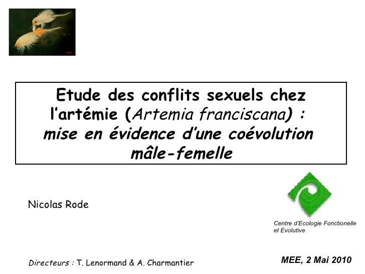 Etude des conflits sexuels chez l'artémie ( Artemia franciscana ) :  mise en évidence d'une coévolution  mâle-femelle Nico...