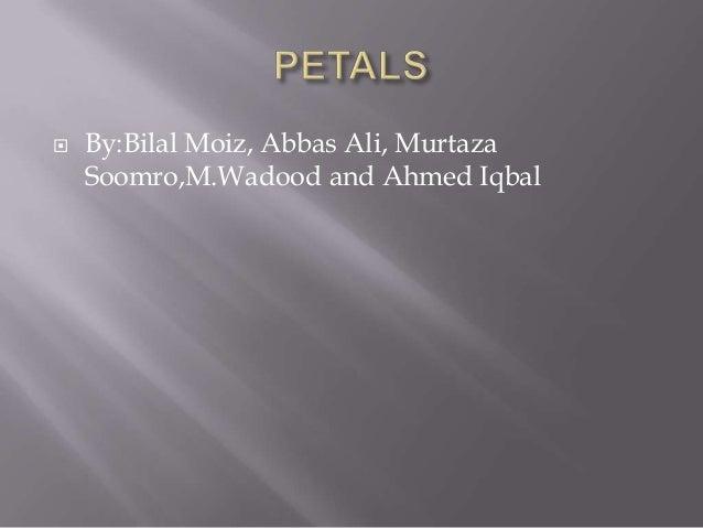  By:Bilal Moiz, Abbas Ali, MurtazaSoomro,M.Wadood and Ahmed Iqbal