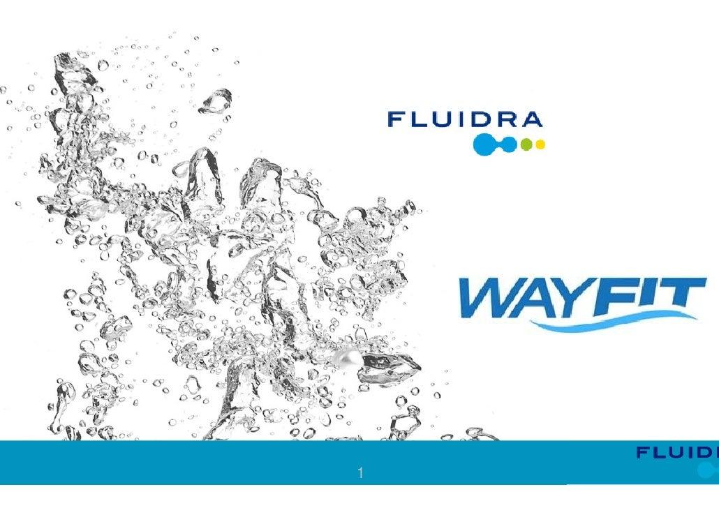 Presentation of company fluidra