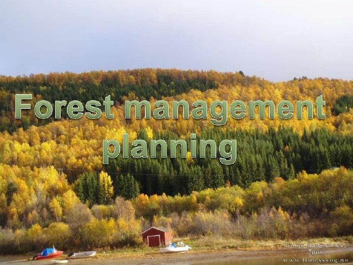 Forest managementplanning<br />Troms skogselskap2009www.tromsskog.no<br />