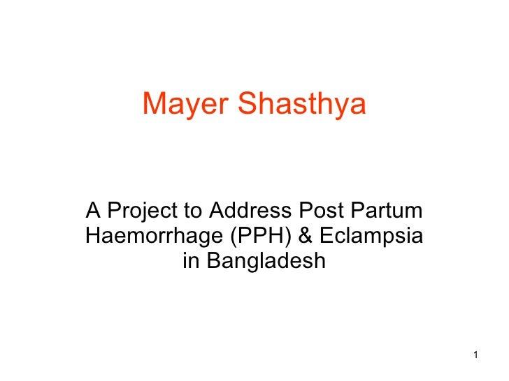 Presentation of swanirvar pph project