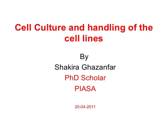 Cell Culture and handling of the cell lines By Shakira Ghazanfar PhD Scholar PIASA 20-04-2011