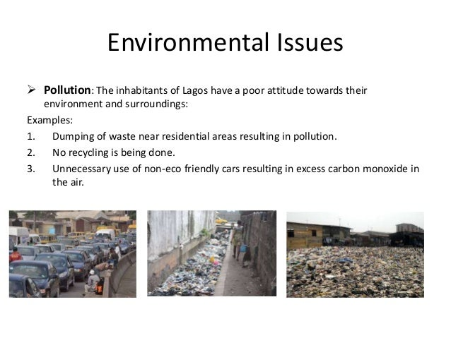 Thesis on environmental issues