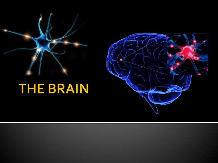 Names are:                           Dopamine                           NorepinephrineChemicals that float inbetween you...