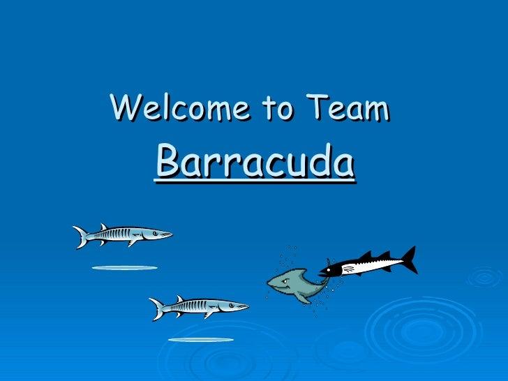 Welcome to Team  Barracuda