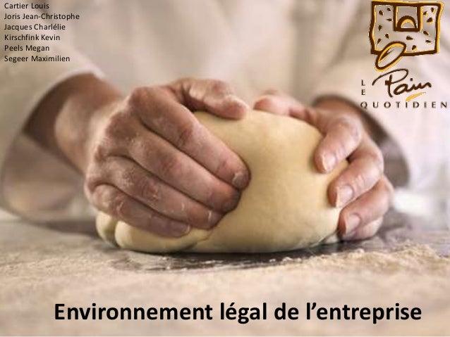 Environnement légal de l'entreprise Cartier Louis Joris Jean-Christophe Jacques Charlélie Kirschfink Kevin Peels Megan Seg...