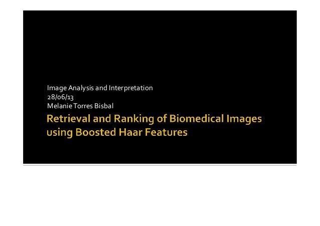 Image  Analysis  and  Interpretation   28/06/13   Melanie  Torres  Bisbal