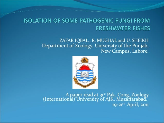 ZAFAR IQBAL., R. MUGHAL and U. SHEIKHDepartment of Zoology, University of the Punjab,New Campus, Lahore.A paper read at 31...