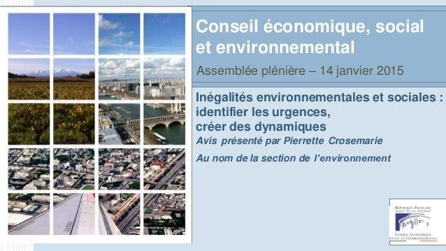 Inégalités environnementales et sociales : identifier les urgences, créer des dynamiques Avis présenté par Pierrette Crose...