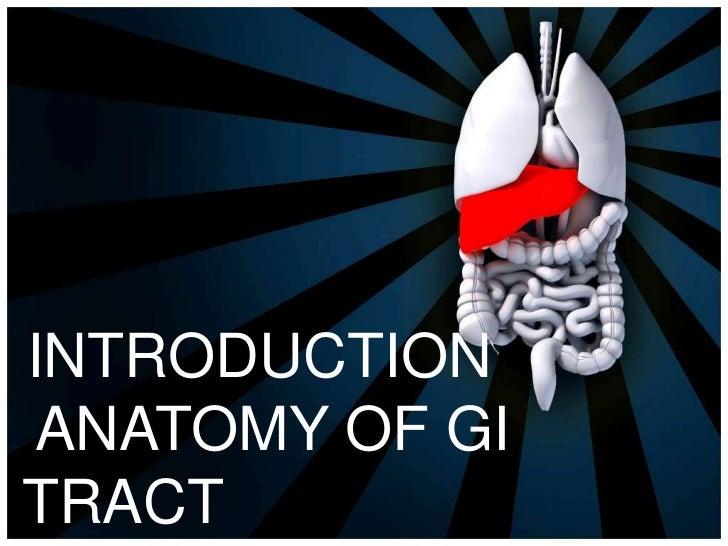 INTRODUCTIONANATOMY OF GITRACT