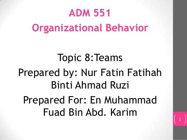 Organizational Behavior (TEAM)