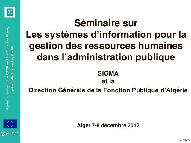 The SIRH in Portugal: Policy Decisions on Human Resources Rely on Public Employment Statistics