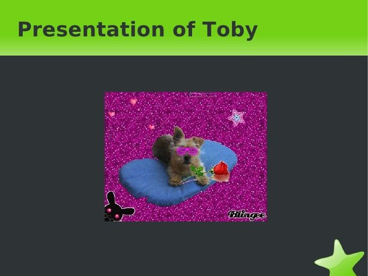Presentation of Toby