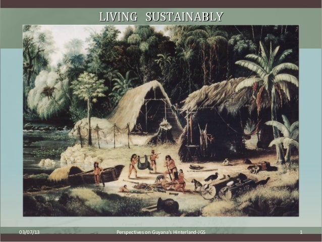LIVING SUSTAINABLY03/07/13     Perspectives on Guyanas Hinterland-JGS   1