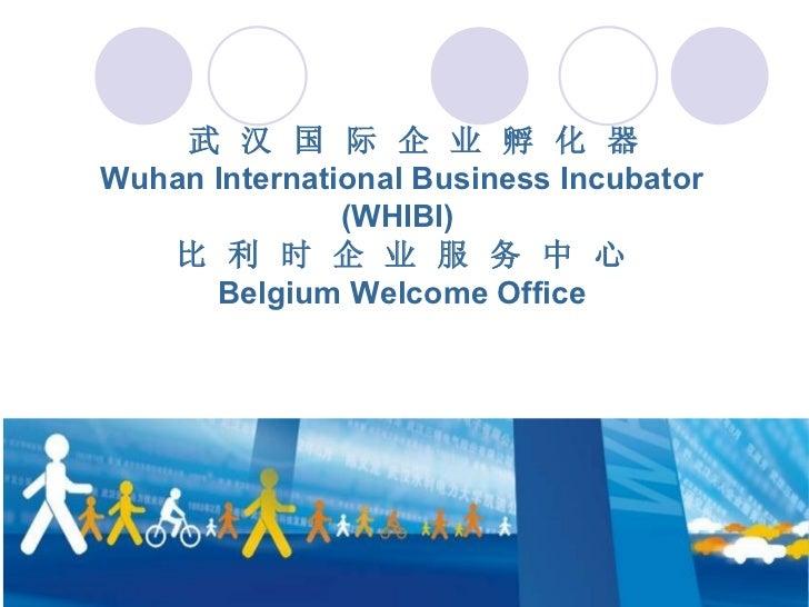 Séminaire Hubei - WHIBI & Belgium Welcome Office