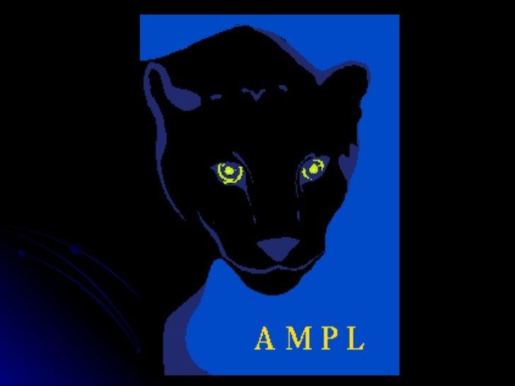 Ricerca Operativa - AMPL