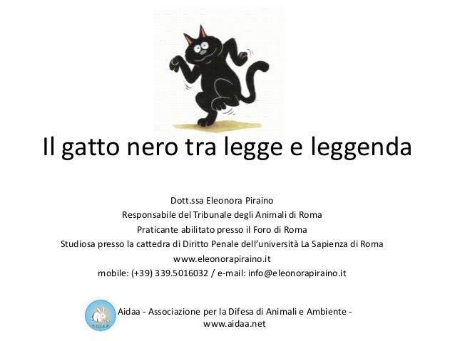 Il gatto nero tra legge e leggenda Dott.ssa Eleonora Piraino Responsabile del Tribunale degli Animali di Roma Praticante a...