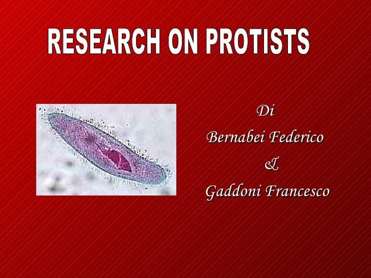DiBernabei Federico        &Gaddoni Francesco