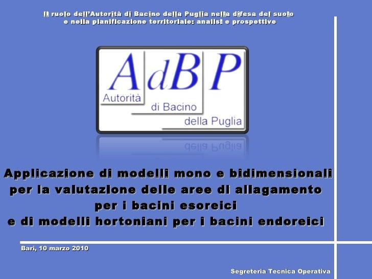 Applicazione di modelli mono e bidimensionali per la valutazione delle aree di allagamento  per i bacini esoreici  e di mo...