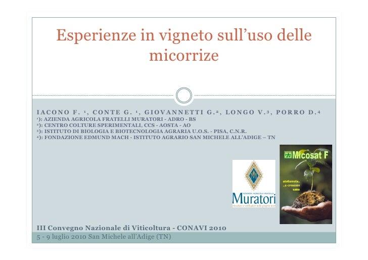 Presentazione conavi 2010.pptx