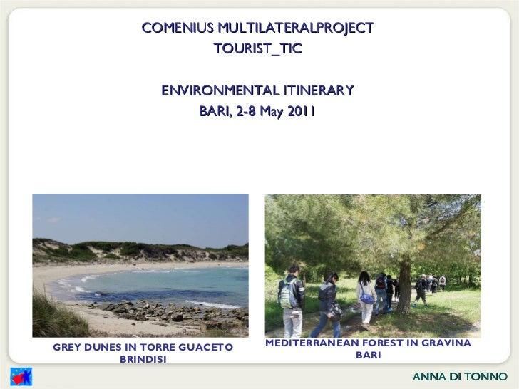 COMENIUS MULTILATERALPROJECT TOURIST_TIC ENVIRONMENTAL ITINERARY BARI, 2-8 May 2011 GREY DUNES IN TORRE GUACETO BRINDISI M...
